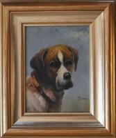 Ismeretlen (20.sz. vége) : Kutya-portré