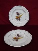 Zsolnay süteményes tányér, madár motívummal.