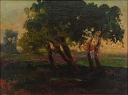 0W665 Ismeretlen festő : Naplemente fákkal