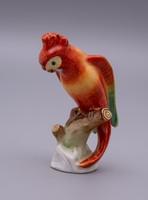 Herendi ágon ülő papagáj