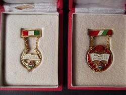 A Tanács Kiváló Dolgozója és Tanácsi Munkáért kitüntetés dobozában