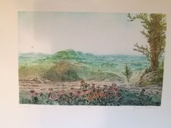 Gross arnold rare, colorful etching: Transdanubia