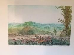 Gross Arnold ritka, színes rézkarca: Dunántúl
