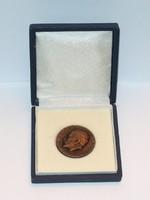 Országos Korányi TBC és Pulmonológiai Intézet 1901 1976 Dobozos Bronz Emlékérem Plakett