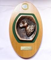 Farmer Expó 2003,Juhtenyésztés II.díj bronz plakett.