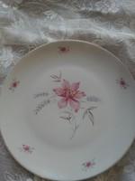 Drasche tányér lapos