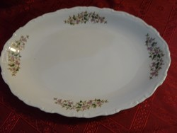GEBRÜDER BENEDIKT ritka antik csehszlovák porcelán ovális  húsos tál.