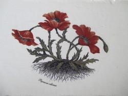 Vintage fa tálcácsa pipaccsal (régi botanikai ábrázolás) - Toscanából