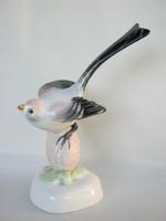 Aquincumi porcelán madár őszapó