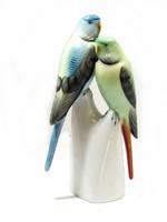 Hollóházi papagáj (Kecs-Bi37160)