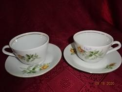 KAHLA minőségi német porcelán teáscsésze + alátét, sárga rózsával, vitrin minőség.