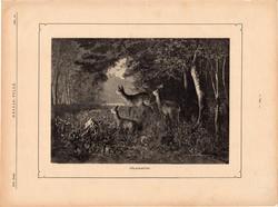 Fölriasztva, fametszet 1881, metszet, nyomat, 17 x 25 cm, Ország - Világ, újság, őz, szarvas, erdő