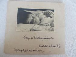 Babafotó 1934-ből, dedikációval, kartonra ragasztva
