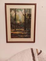 Beregszászy Tamás:Erdőrészlet