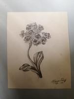 Kluge Károly - Virág tanulmány