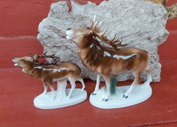 Gyönyörű  Német Lippelsdorf szarvas,szarvasok , Gyűjtői, ritka darabok nipp, figura, porcelán