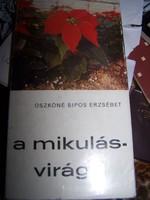 A mikulásvirág