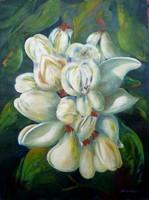 Sebestyén Erzsébet: Akác virág (olaj-kasírozott vászon) 60x45 cm