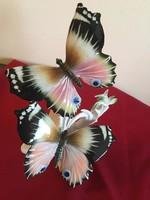 ENS Pillangó pár