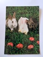 Retro húsvéti képeslap  nyuszis levelezőlap