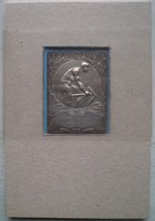 Terézvárosi Torna Club. TTC.  Jubileumi emlékplakett  1927