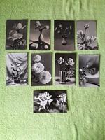 Virágos képeslapok  használt