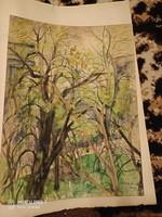 37 db Kolár Nándorné Staub Cecilia akvarell és grafika