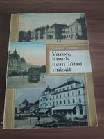 Fleisz János: Város kinek nem látni mását