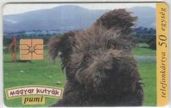 Magyar telefonkártya 0640 1996 Pumi   GEM 1       276.000 darab