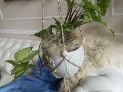 Egzotikus kauri csigákból fűzött virágtartó függeszték