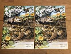 2 db Állatos képeslap - Közönséges varangy