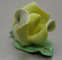 B358 Aquincumi rózsa