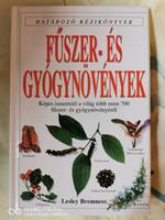 Fűszer- és Gyógynövények - Határozó kézikönyvek sorozat (1988)