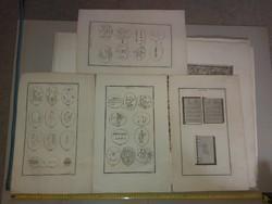 Abraxas, Varin, 1773, négy rézkarc a 18.század vége felől, vízjeles papíron, méret jelezve!