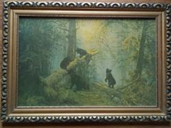 Üvegezett fa képkeret 65 x 46 cm