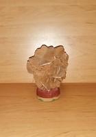Erdélyi antik só rózsa ahogyan a természet alkotta 13 cm magas