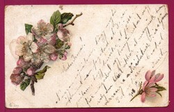 *E - 0015 - - - 1901  Üdvözlet (csillámos domború nyomással)