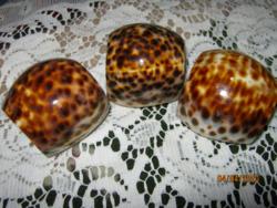 3 db porcelán csiga szalvéta gyűrű