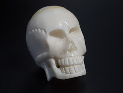 Faragott Csont Koponya