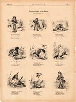 Szerencsétlen varjú - fogás, fametszetek 1881, metszet, nyomat, 29 x 39 cm, Ország - Világ, vers