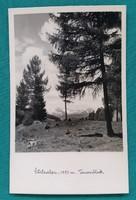 Ausztria,Stozalpe,1250,Tauernblick 1957,használt külföldi képeslap