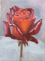 Antyipina Galina: Piros rózsa, olajfestmény, vászon. 24x18cm