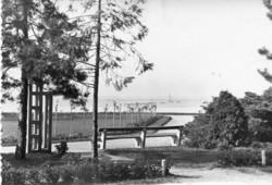 *Ba - 041   Balatont kedvelőknek: Siófok - parkrészlet