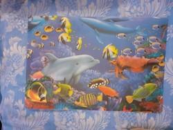 Tenger mélyi halak 2 db alátét vagy kép (műanyag)