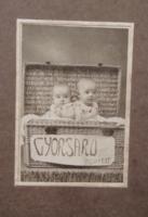 Antik, magyar keményhátú fotó műtermi fotó, babák, ikrek? kosárban 'Gyorsáru' felirattal