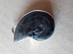 Charles Albert Ammonitesz fosszília ezüstbe foglalva - szignózott, fémjelzett ritkaság