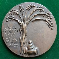 """Csíkszentmihályi Róbert: """"A jövőnek hajtja a gyümölcsét"""", bronz plakett (1970)"""