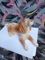 Kerámia kutya