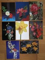 Virágos képeslapok  - ár / db        -2 cs .