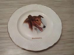 Angol porcelán jelenetes tányér.